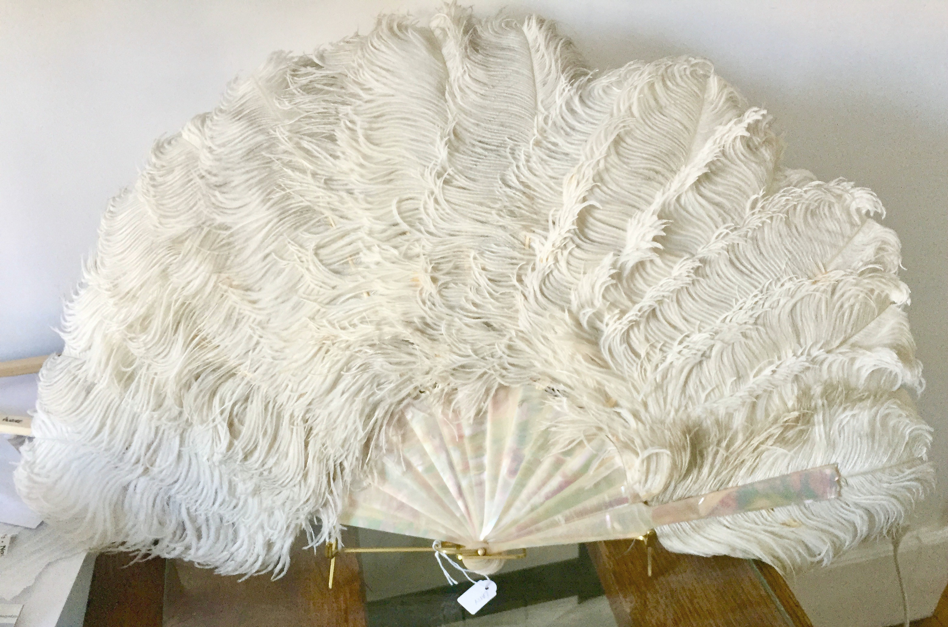 Feather Fan after conservation