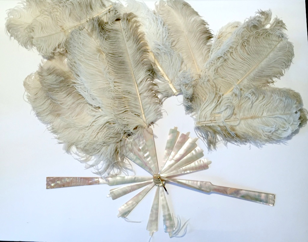 Feather Fan before conservation